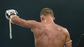 Jimmy Vienot de Suiza en la lucha tailandesa 2013. Fotos de archivo libres de regalías