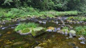 Jinbianxi den guld- Whip Stream Royaltyfria Foton