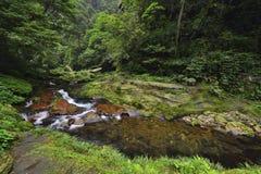 Jinbianxi den guld- Whip Stream Royaltyfria Bilder