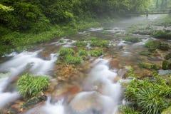 Jinbianxi (Golden Whip Creek) at Zhangjiajie royalty free stock photo