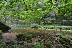 Jinbianxi, the Golden Whip Stream. Jinbianxi is one of the most beautiful valleys in the world.It is about 7.5km long and 30-50m wide.Jinbianxi is like a blue Royalty Free Stock Photos