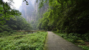 Jinbianxi, the Golden Whip Stream. Jinbianxi is one of the most beautiful valleys in the world.It is about 7.5km long and 30-50m wide.Jinbianxi is like a blue Stock Images