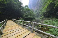 Jinbianxi, the Golden Whip Stream. Jinbianxi is one of the most beautiful valleys in the world.It is about 7.5km long and 30-50m wide.Jinbianxi is like a blue Royalty Free Stock Images