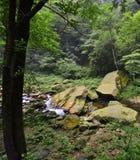 Jinbianxi, goldene Whip Stream Stockfoto
