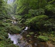 Jinbianxi, goldene Whip Stream Stockfotografie