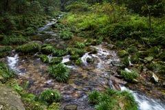 Jinbianxi (Whip Creek de oro) en Zhangjiajie Fotos de archivo libres de regalías