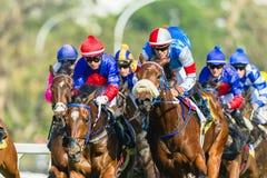 Jinete Action de la carrera de caballos Imagen de archivo