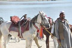 Jinete afgano que monta a caballo en orilla del lago fotos de archivo libres de regalías