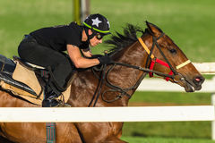 Jinete Closeup Running Track del caballo de raza Fotografía de archivo