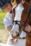 Jinete con el caballo criado en línea pura Foto de archivo libre de regalías