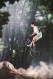 Jinete de la bici de Bmx en el bosque Foto de archivo libre de regalías