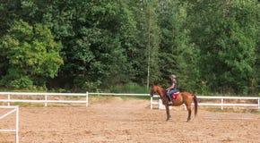Jinete de la chica joven en una doma en el parque en un caballo delgado fotografía de archivo libre de regalías