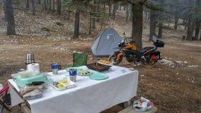Jinete de la motocicleta en el bosque Imagen de archivo libre de regalías