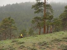 Jinete de lomo de caballo en montañas Imagen de archivo libre de regalías