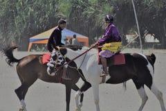Jinete del caballo fotografía de archivo libre de regalías
