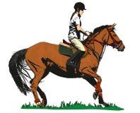 Jinete del caballo Imagen de archivo