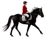 Jinete del caballo del negro del deporte ecuestre Fotos de archivo
