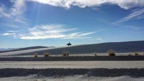 Jinete del desierto Fotos de archivo libres de regalías
