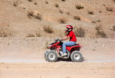 Jinete del patio ATV en desierto Foto de archivo
