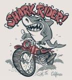 Jinete del tiburón en diseño de la camiseta del vector de la motocicleta ilustración del vector