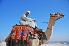 Jinete egipcio del camello Imágenes de archivo libres de regalías