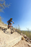 Jinete en declive de la bici Imagenes de archivo