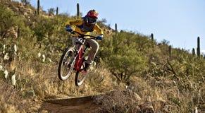 Jinete en declive de la bici que monta abajo del rastro Imagenes de archivo