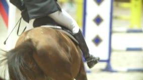 Jinete en el caballo negro que galopa en la competencia de salto de demostración, a cámara lenta almacen de video
