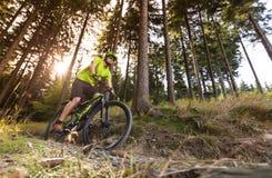 Jinete en la acción en la bici de montaña Fotos de archivo libres de regalías