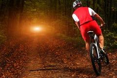 Jinete en la acción en la sesión de la bici de montaña del estilo libre Foto de archivo libre de regalías