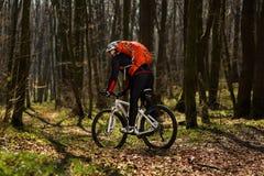 Jinete en la acción en la sesión de la bici de montaña del estilo libre Imagen de archivo