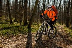 Jinete en la acción en la sesión de la bici de montaña del estilo libre Imagen de archivo libre de regalías