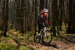 Jinete en la acción en la sesión de la bici de montaña del estilo libre Fotos de archivo libres de regalías