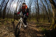 Jinete en la acción en la sesión de la bici de montaña del estilo libre Fotografía de archivo