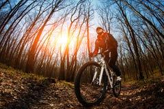 Jinete en la acción en la sesión de la bici de montaña del estilo libre Fotos de archivo