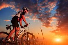 Jinete en la bicicleta de la montaña él el bosque Fotografía de archivo