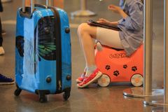 Jinete en las maletas Foto de archivo libre de regalías