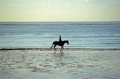 Jinete en una playa Imágenes de archivo libres de regalías