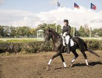Jinete hermoso de ROSTOV-ON-DON, RUSIA 22 de septiembre - en un caballo Imagenes de archivo