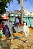 Jinete joven en Sevilla Fair, España del caballo Fotos de archivo libres de regalías