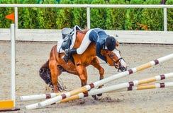 Jinete joven que cae de caballo durante una competencia Accidente de salto de la demostración del caballo Foto de archivo