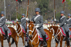 Jinete militar. Escort of mounted soldiers in military parade in chile Stock Photo