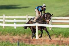 Jinete Train Sand Track del caballo de raza Foto de archivo