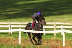 Jinete Training Run Track del caballo de raza Fotografía de archivo