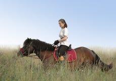 Jinete y caballo Imágenes de archivo libres de regalías