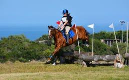 Jinete y caballo del campo a través Foto de archivo