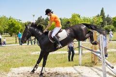 Jinete y salto negro del caballo Foto de archivo libre de regalías