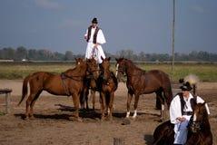Jinetes, Bugac, Hungría Foto de archivo libre de regalías
