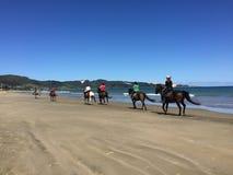 Jinetes a caballo en la playa de 90 millas, Ahipara, Nueva Zelanda Fotos de archivo