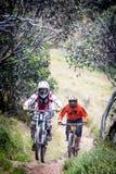 Jinetes de la bici de montaña en Mt Buller Fotos de archivo